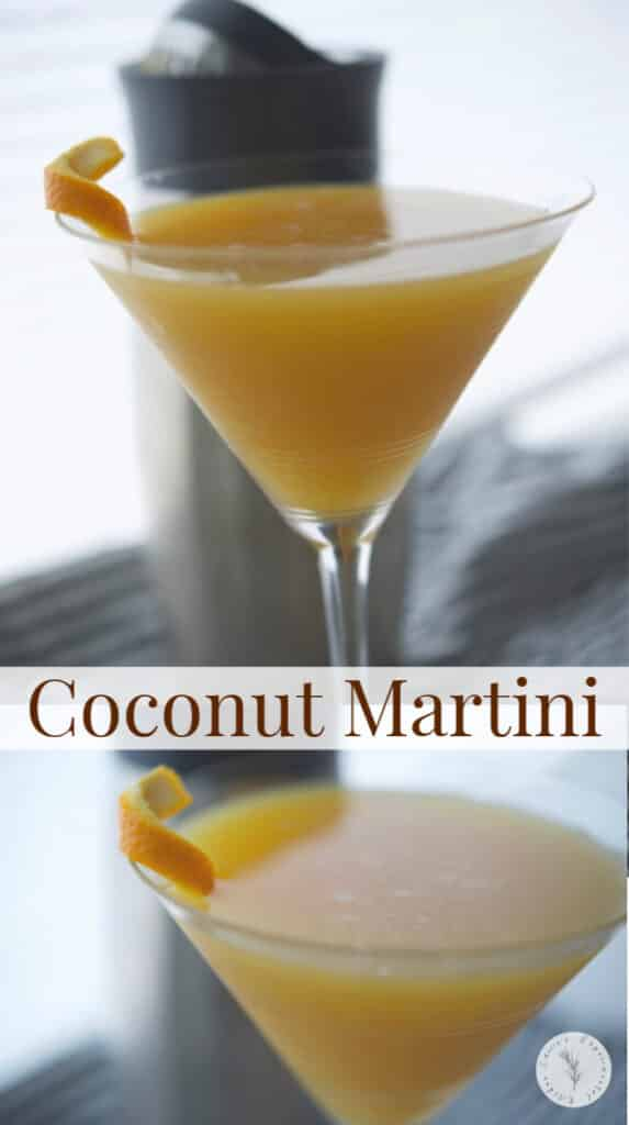 Indulge in this fruity Coconut Martini made with four ingredients. It's a cool and refreshing adult beverage on a hot Summer day.