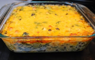 Fiesta Chicken Spinach Dip