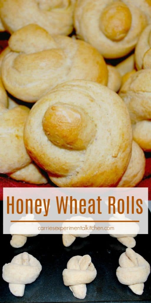 These Honey Wheat Rolls have just the right amount of sweetness, are simple to prepare and will make any family meal even more enjoyable.