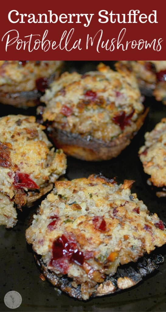 Portobella mushrooms stuffed with dried cranberries, rosemary, garlic, cream cheese and Panko breadcrumbs make a tasty Fall appetizer.