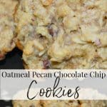 Add these Oatmeal Pecan Chocolate Chip Cookies to your holiday baking list. They're moist, super flavorful and great for dunking!