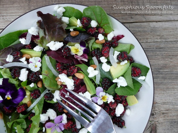 Mulberry Salad