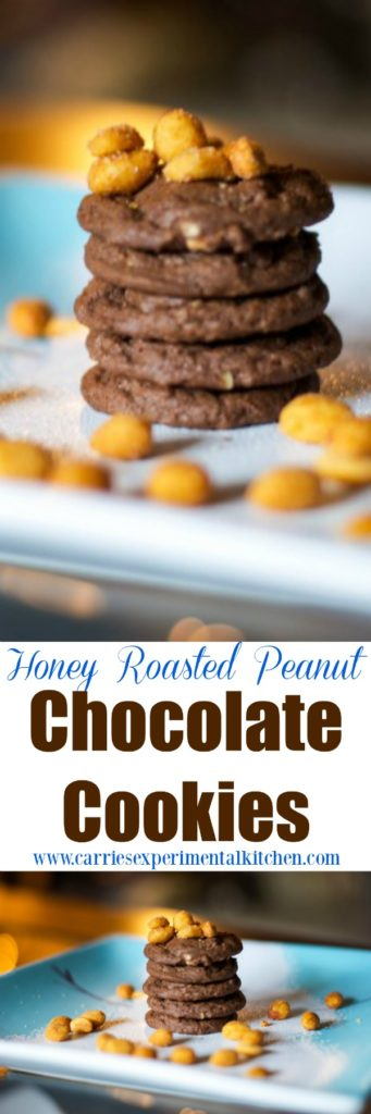 Are you looking for a sweet, salty, chocolatey snack? Try these Honey Roasted Peanut Chocolate Cookies. You won't be disappointed.