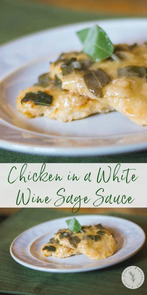 Boneless chicken breasts sautéed in butter and EVOO; then paired with a white wine sage sauce is easy enough for a weeknight meal or a family get together.
