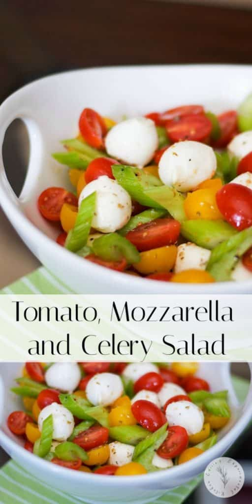 This Mediterranean Tomato, Mozzarella & Celery Salad is a twist on one of my favorites. I just love the crunch that the celery adds.