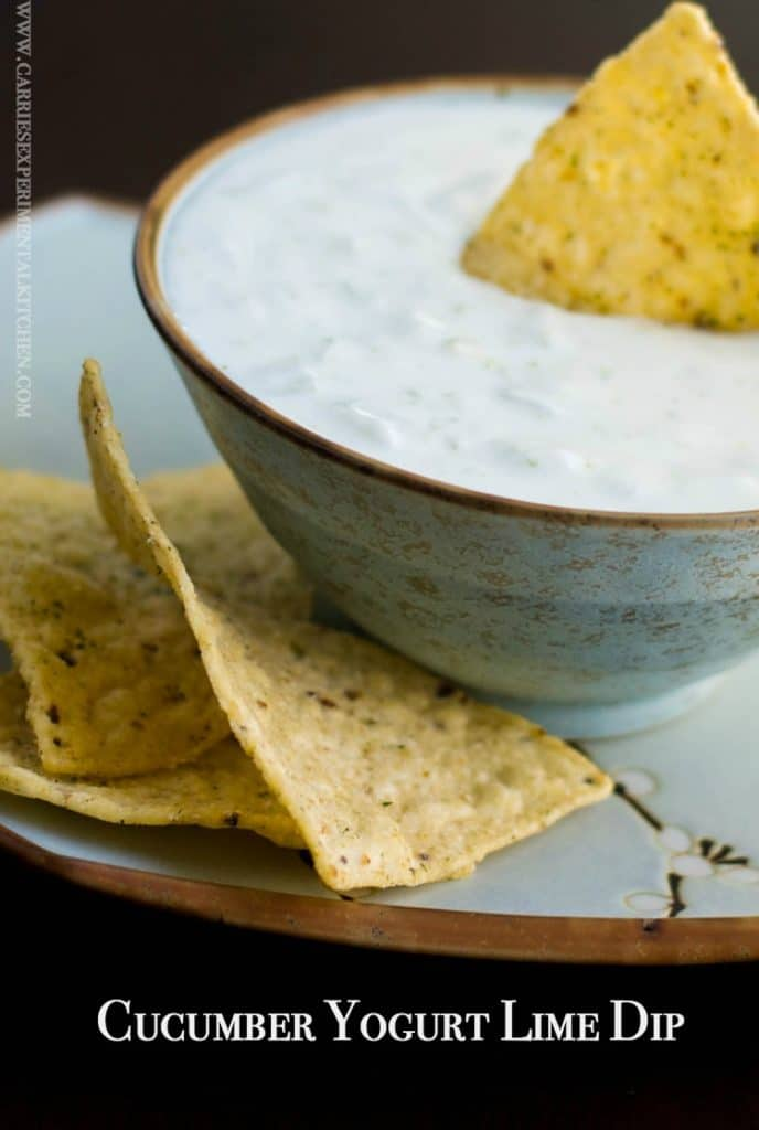 This low fat Cucumber Yogurt Lime Dip is so light and refreshing. Scoop your favorite tortilla chip or place on top of grilled chicken or fish.