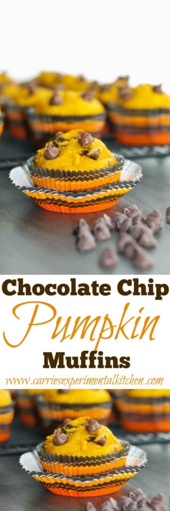 CCelebrate all things Fall with these Chocolate Chip Pumpkin Muffins. At only 223 calories each, they make a tasty snack or quick, on the go breakfast.