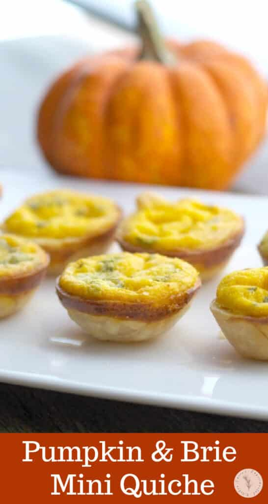 Use a mini muffin tin to create these Pumpkin and Brie Mini Quiche to serve as individual appetizers for your next holiday gathering.