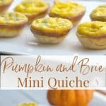 These Pumpkin & Brie Mini Quiche are delicious and so easy to make. Use a mini muffin tin to create individual appetizers for your holiday gathering.