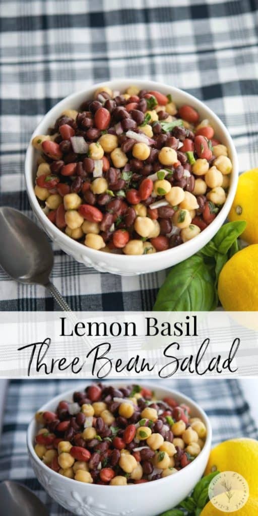 This heart healthy three bean salad made with black beans, kidney beans and chick peas is packed with refreshingly light flavors of lemon and basil.