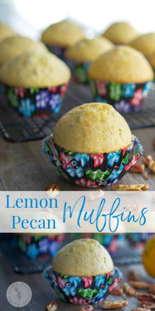 Eat these Lemon Pecan Muffins for breakfast or afternoon snack. They're deliciously light with a hint of lemon flavor. Try them yourself!