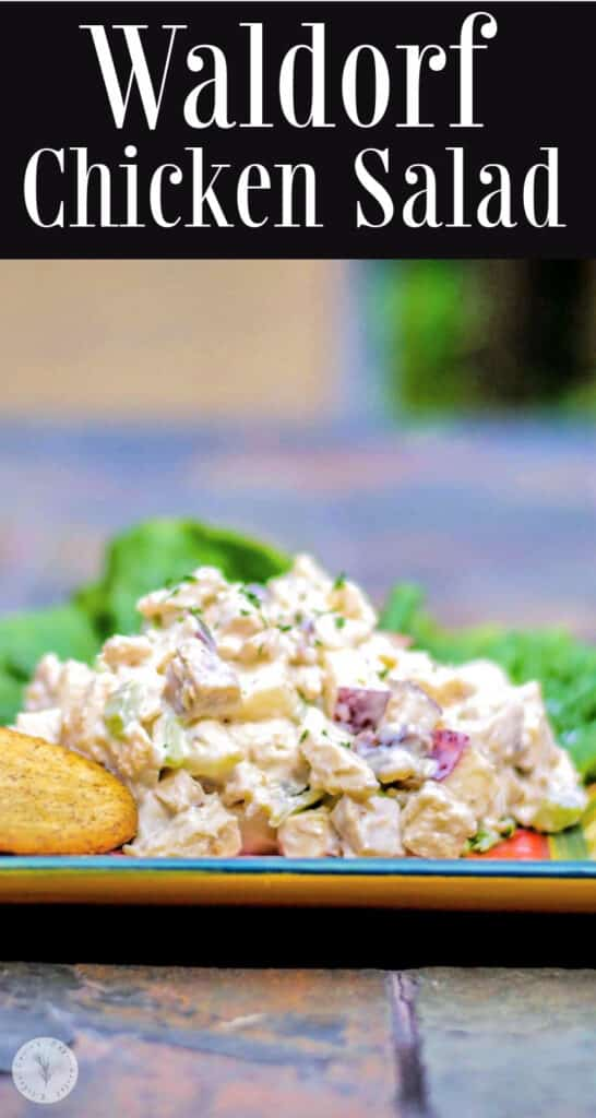 Waldorf Chicken Salad in a plate