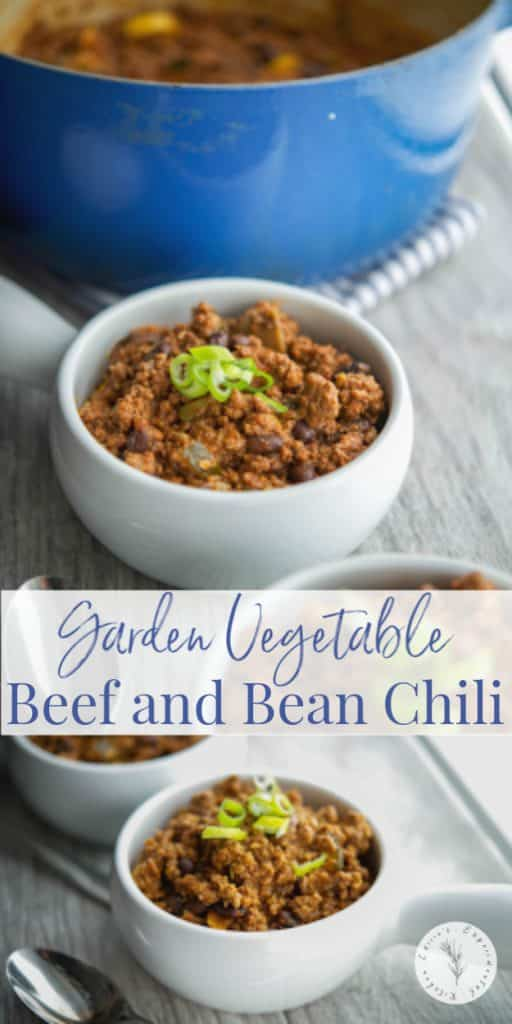 This hearty Garden Vegetable Beef and Bean Chili is cooked slowly with zucchini, yellow squash, tomatoes, extra lean beef and black beans.
