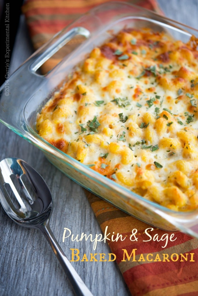 This Pumpkin & Sage Baked Macaroni screams Fall and makes a tasty, quick weeknight meal obar as a starter for your holiday gatherings.