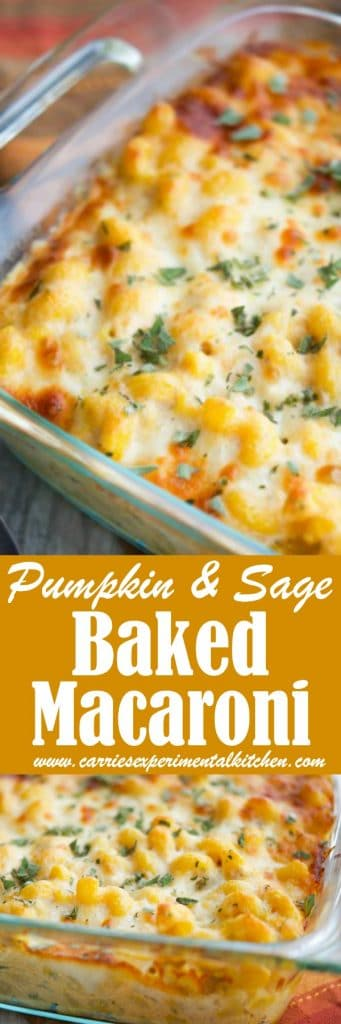 This Pumpkin & Sage Baked Macaroni is perfect any time of the year, but would make a lovely addition to your holiday get togethers.