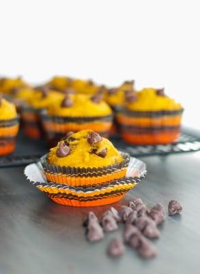 chocolate chip pumpin muffins