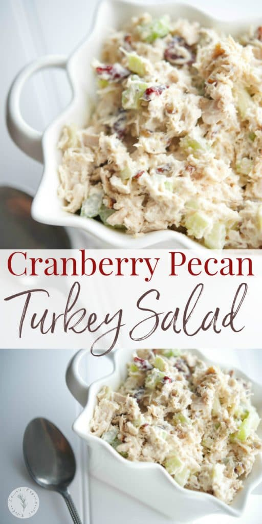 Utilize leftover roasted turkey by making this Cranberry Pecan Turkey Salad using sweet dried cranberries and rich, buttery pecans.