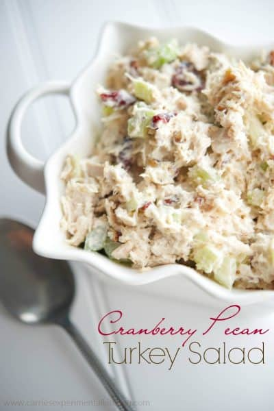 Cranberry Pecan Turkey Salad - Turn your leftover turkey into a new Fall favorite sandwich.