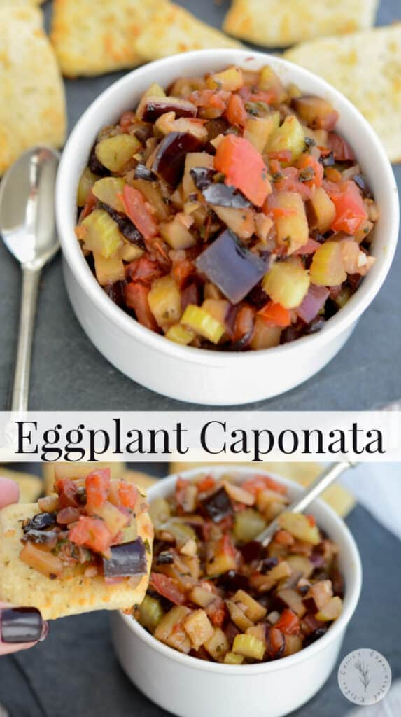 Sweet and sour Eggplant Caponata makes a tasty appetizer on pizza dippers, toasted Italian bread or placed on top of grilled chicken or fish.
