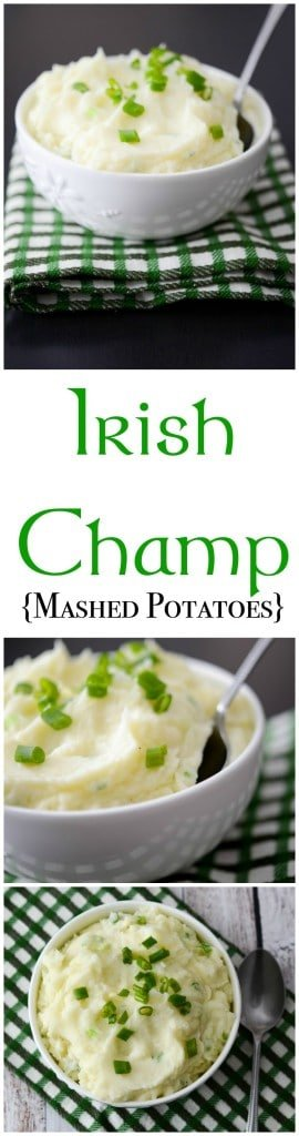 Even if you're not of Irish decent, this recipe for Irish Champ made with russet potatoes, scallions, butter and milk istastyand simple to make.#potatoes #irish #stpatricksday #mashedpotatoes #sidedish