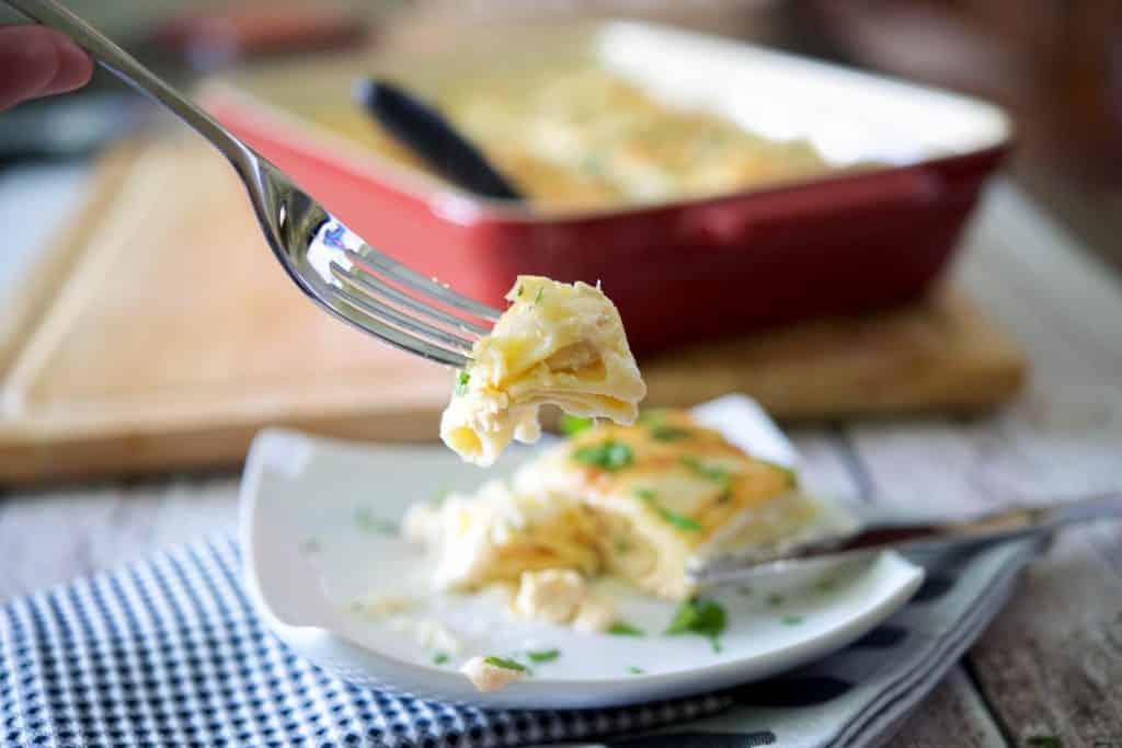 Buffalo Chicken Lasagna Roll Ups-plated