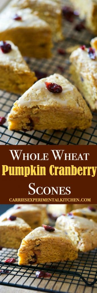 'Tis pumpkin season once again and these Whole Wheat Pumpkin Cranberry Scones are deliciously moist and perfect for breakfast or an afternoon snack.