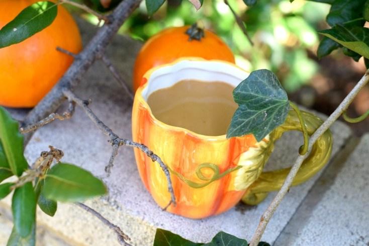 Crockpot Pumpkin Maple Lattes