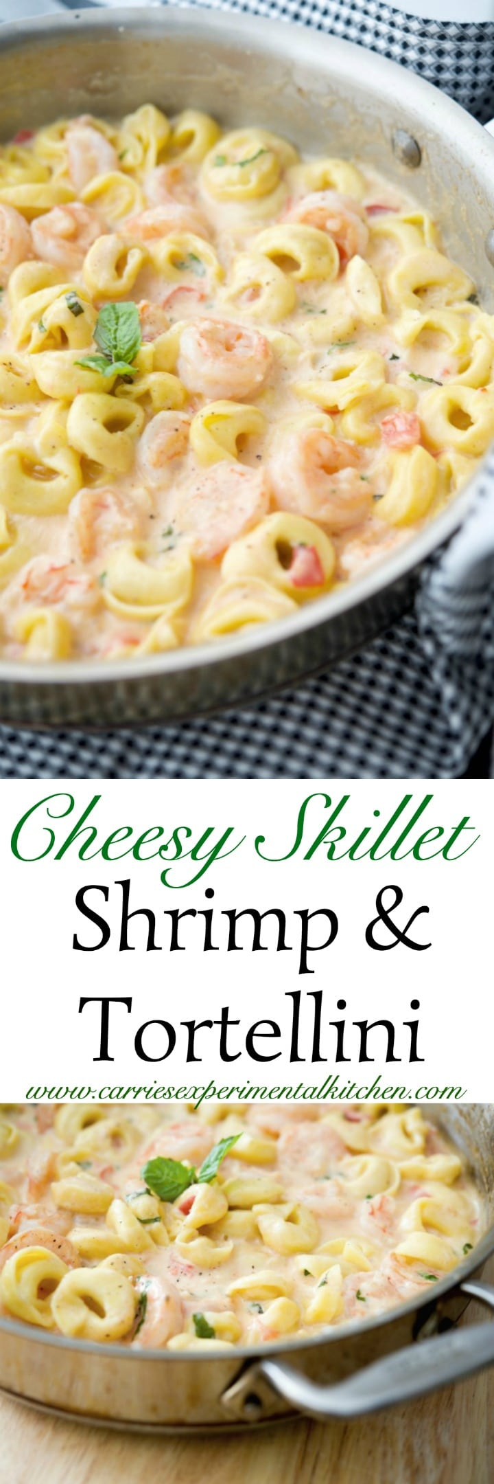 Cheesy Skillet Shrimp & Tortellini made with jumbo shrimp combined with cheese tortellini in a cheesy tomato basil Alfredo sauce. #shrimp #pasta #skillet