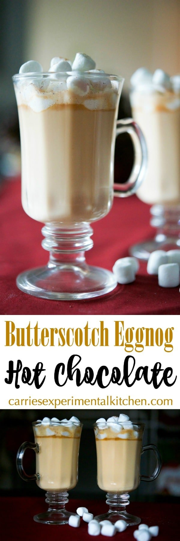 Butterscotch Eggnog Hot Chocolate made with butterscotch morsels, eggnog, milk, vanilla and ground nutmeg is sure to warm the soul during the cold winter months. #eggnog #hotchocolate #butterscotch #winter