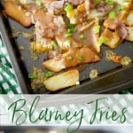 Blarney Fries are my version of an Irish Poutine made with steak cut french fries, Irish Dubliner cheese, shaved roast beef; then topped with brown gravy.