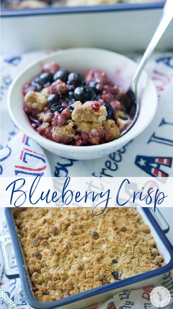 Blueberry Crisp made with fresh blueberries, honey, lemon and vanilla extract; then topped with a buttery brown sugar, oat topping is delicious.