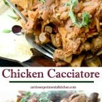 Italian Chicken Cacciatore made with chicken parts, garlic, mushrooms, fresh oregano and onions in a red wine marinara sauce.