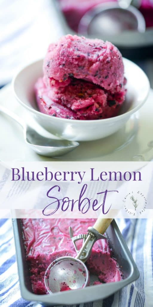 Making homemade frozen desserts that are dairy free is super easy and refreshingly delicious like this Blueberry Lemon Sorbet.
