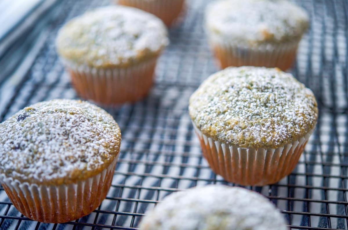 Blueberry Pie Corn Muffins