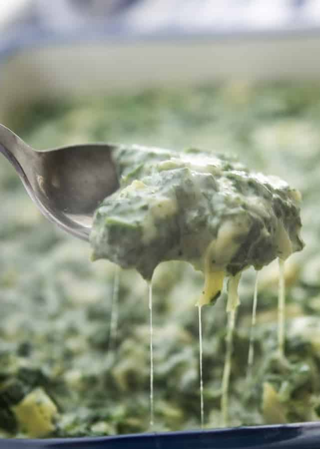 Spinach Artichoke Dip on spoon