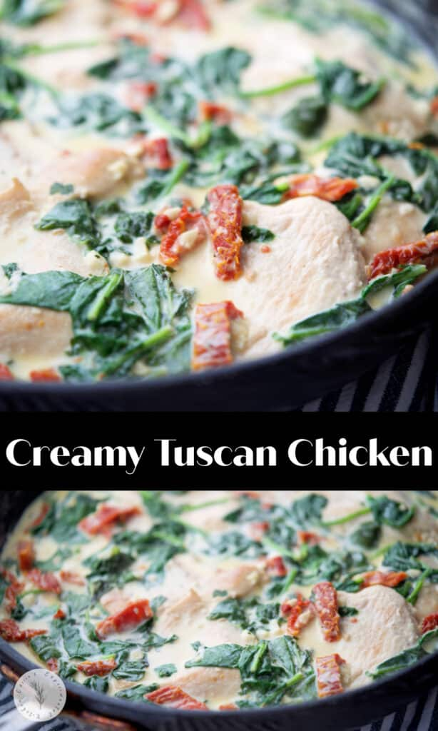 Creamy Tuscan Chicken made with boneless chicken pan seared in a skillet tossed with fresh spinach and sun dried tomatoes in an alfredo sauce.